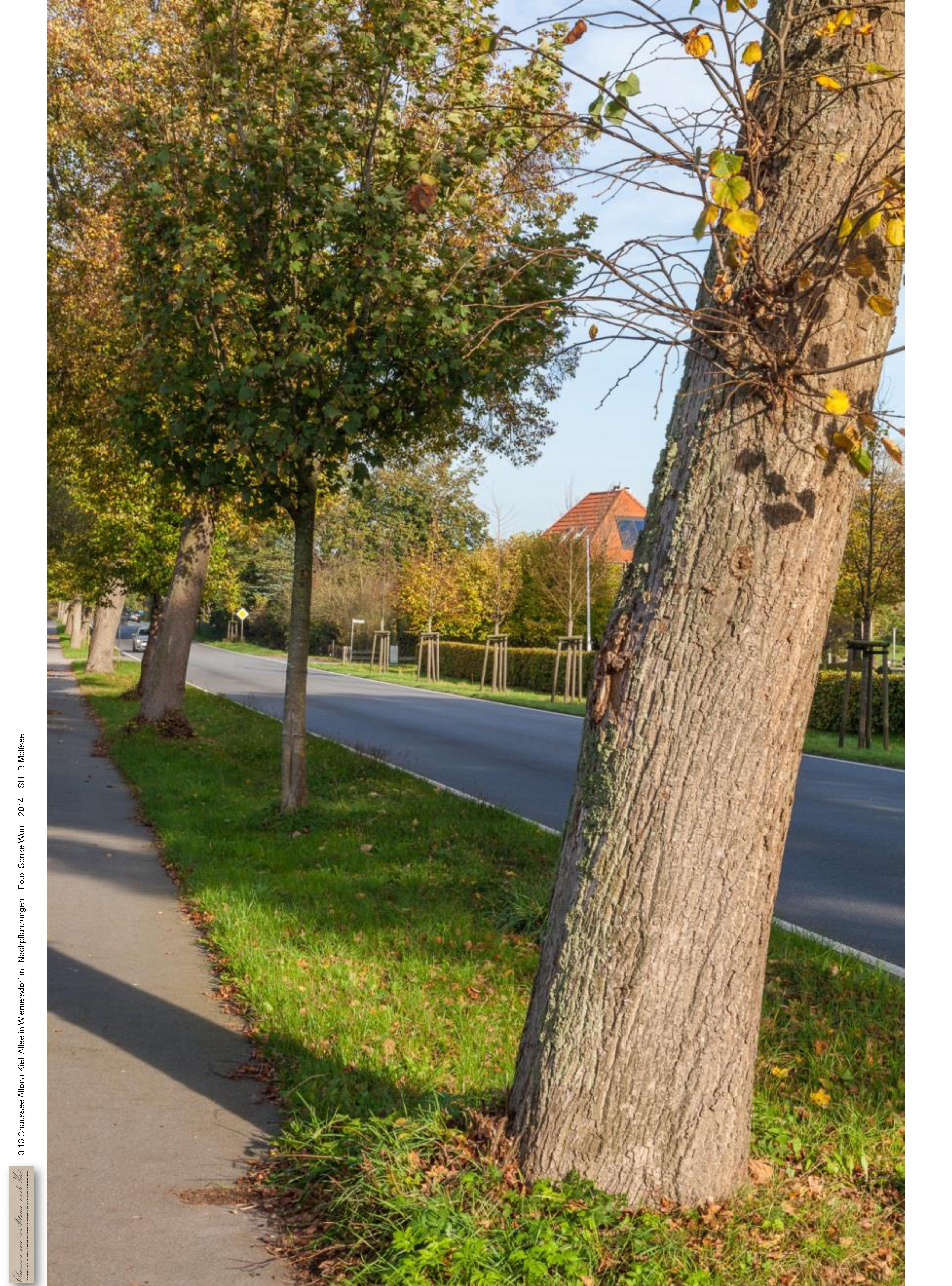 3-13-alleewiemersdorf