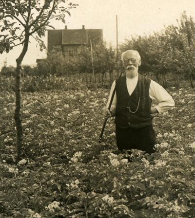 Aug._Kuhl_in_seinem_Garten-_Juli_1936_400