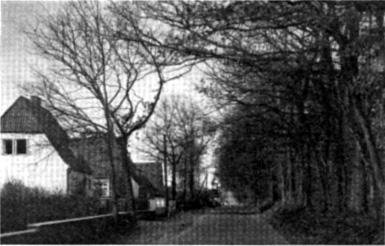 """7. Der """"Ochsenweg"""" in Bad Bramstedt."""